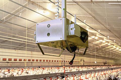 ChickenBoy analysis robot